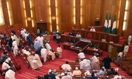 Nigerian Senator removes face mask to sneeze during plenary
