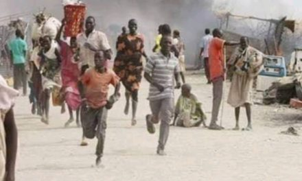 Bandits Kill 33 In Katsina State