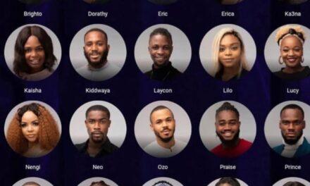 BBNaija Season 5: Meet All The 20 Housemates For 2020 Edition (Details)