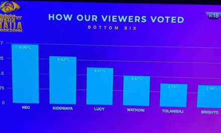 BBNaija: How viewers voted for their favourite housemates this week (the last six)