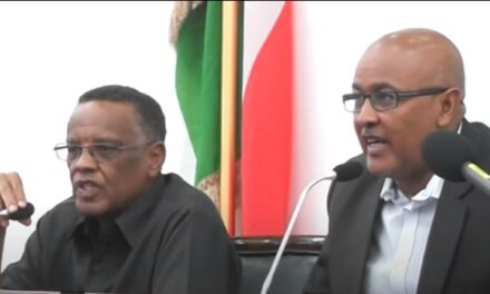 Video of Somalian president allegedly exchanging heavy blows with his vice-president is fake news