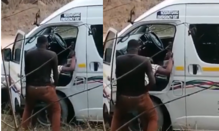 Bus driver caught on camera while having sex with lady, by the road side