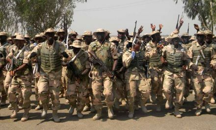 """Nigerian Army set to launch operation """"Crocodile Smile"""", after multiple website hacks related to #EndSARS protest"""