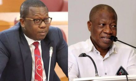 """#EndSARS: """"Who is she fronting for? Who are her sponsors?""""- Lai Mohammed tackles DJ Switch"""