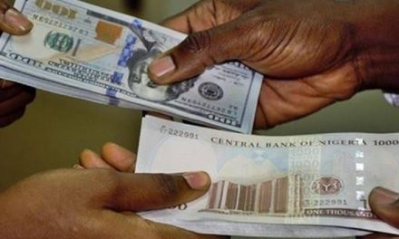 Naira declines after CBN halts forex sales to BDCs