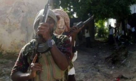 60 kidnapped as Bandits launch another attack in Rini town, Zamfara