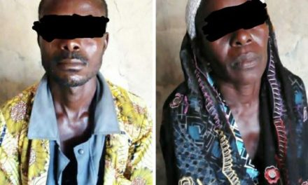 Woman who had three children for her biological son arrested by NSCDC